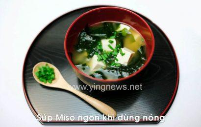 Cách làm món súp Miso đơn giản tại nhà