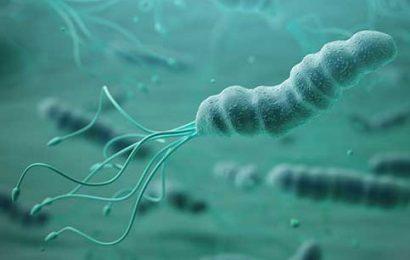 Nhiễm vi khuẩn H. pylori: Nguyên nhân, Triệu chứng, Cách điều trị